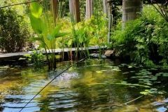 award-winning-landscaping-downes-10