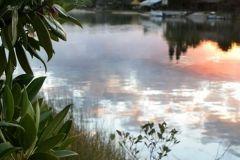 environmental-landscaping-sunshine-coast-11