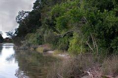 environmental-landscaping-sunshine-coast-18