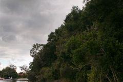 environmental-landscaping-sunshine-coast-19