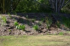 environmental-landscaping-sunshine-coast-33