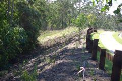 environmental-landscaping-sunshine-coast-43