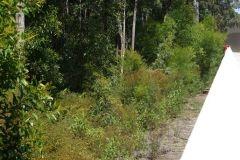 environmental-landscaping-sunshine-coast-6