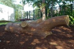 playground-landscaping-sunshine-coast-6