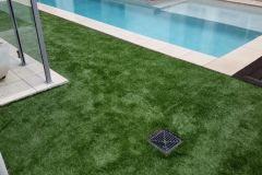 naturalising-synthetic-grass-1
