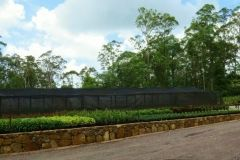 walls-rockery-sunshine-coast-1