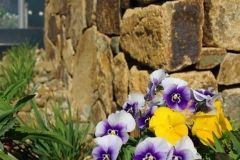 walls-rockery-sunshine-coast-12