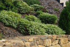 walls-rockery-sunshine-coast-14